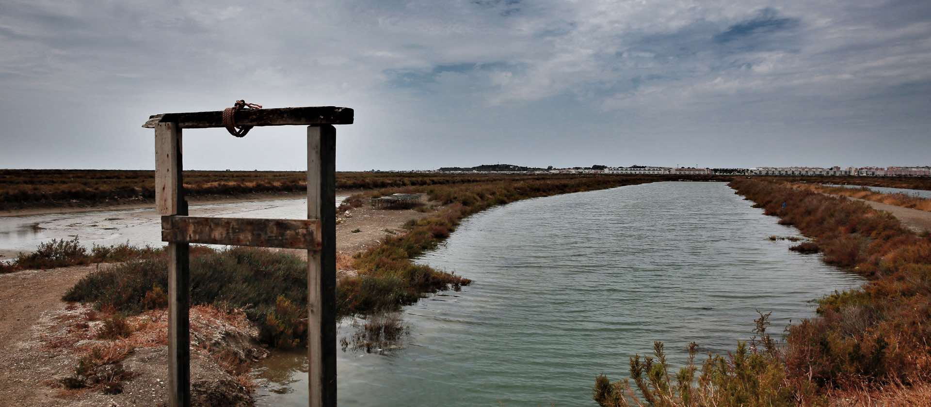 cataria-slide-nature